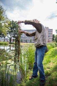 Remko onderzoekt planten4